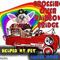I Helped My Pet Cross Rainbow Bridge by Kathy Tarochione