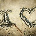 I Love by Steven Michael