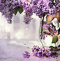 I Picked A Bouquet Of Lilacs Today by Theresa Tahara