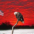 I Pledge Allegiance by Randall Branham