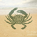 I Thrive Best Hermit Style Typography Crab Beach Sea by Beverly Claire Kaiya