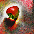 I Vote For A Really Hot Sweet Pepper by Steve Taylor