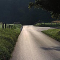 I Walk Alone by Roe Rader