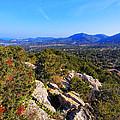 Ibiza Mountains by Karol Kozlowski
