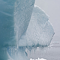 Ice Age... by Nina Stavlund