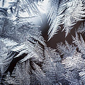 Ice Crystals by Scott Norris