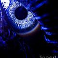 Ice Eye by Andrea Goodrich