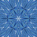 Ice Flower Fractal by Judi Suni Hall