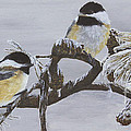Ice Storm Chickadees by Johanna Lerwick