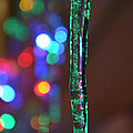 Ice Storm Christmas 2 by Ken DErrico