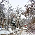 Ice Storm...day 6 by Steve Harrington