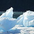Iceberg by Lew Davis