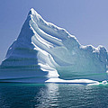 Iceberg by Liz Leyden