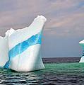 Iceberg Off The Coast Of Newfoundland by Lisa Phillips