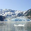 Iceburg by Lew Davis