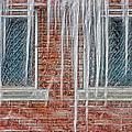 Iced Over by Steve Ohlsen