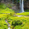 Iceland Seljalandsfoss Waterfall by Matthias Hauser