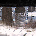 Icicles On The Bridge by Nina Silver