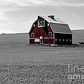 Icon Of The Palouse by Sharon Elliott