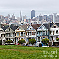 Iconic Painted Ladies by Art Block Collections