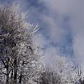Icy Blues by Bonita S Sylor