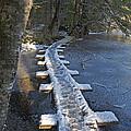 Icy Boardwalk by Cathy Mahnke
