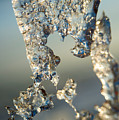 Icy Closeup by David Parker