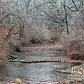 Icy Creek by Jamie  Smith