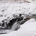 Icy Flow by Lori Tordsen