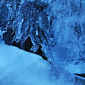 Icy Grimace by Donna Blackhall