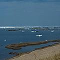 Icy Horizon by Linda Kerkau