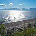 Icy-looking Kachemak Bay In Sunlight From Homer Spit-ak  by Ruth Hager