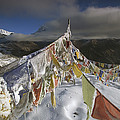 Icy Prayer Flags Himalaya India by Colin Monteath