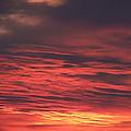 Icy Red Sky by Jennifer Allen