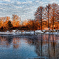 Icy Reflections At Sunrise - Lake Ontario Impressions by Georgia Mizuleva