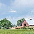 Idaho Falls Barn by Image Takers Photography LLC - Laura Morgan