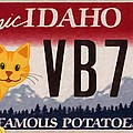 Idaho License Plate by Jeelan Clark