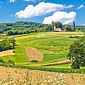 Idyllic Agricultural Landscape Panoramic View by Brch Photography