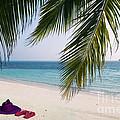 Idyllic Beach Just Waiting For You by Rosemary Calvert