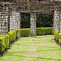 Idyllic Garden by Pati Photography