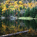 Idyllic Vermont Autumn Glory by Juergen Roth