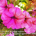 If God Is For Us Who Can Be Against Us by Femina Photo Art By Maggie