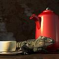 Iguana Coffee by Daniel Eskridge