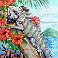 Iguana Hibiscis by David Francke