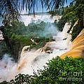 Iguazu Natural Wonder by Inge Johnsson