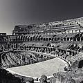 Il Colosseo by Brad Brizek
