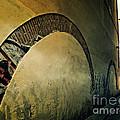 Il Muro  by Micki Findlay