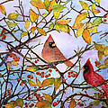 Illinois Cardinals  by Janet Immordino