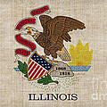 Illinois State Flag by Pixel Chimp