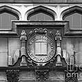 Illinois Wesleyan University Seal by University Icons